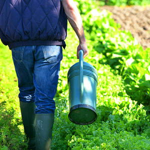 Equipement du jardinier