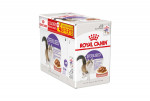 Aliment humide Royal Canin pour chat sterilised sauce