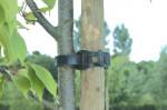 TREE TIE COLLIER ARBRE 45CM