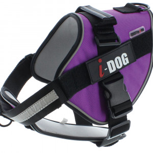 Harnais « NeoCITY » I-DOG - Violet/Gris - Taille XL