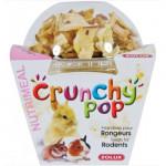 CRUNCHY POP POMME 33G